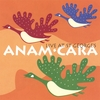 Anam.Cara - Live at St George