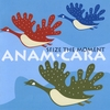 Anam.Cara - Seize the moment